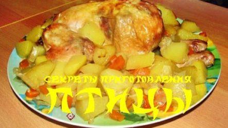 Как готовить блюда из птицы: полезные советы