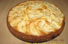 Шарлотка с яблоками: простой рецепт со сметаной